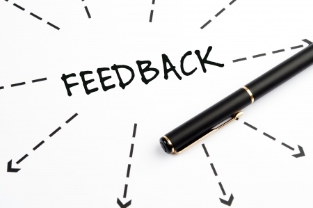 Feedback and expectations   third puppy blog