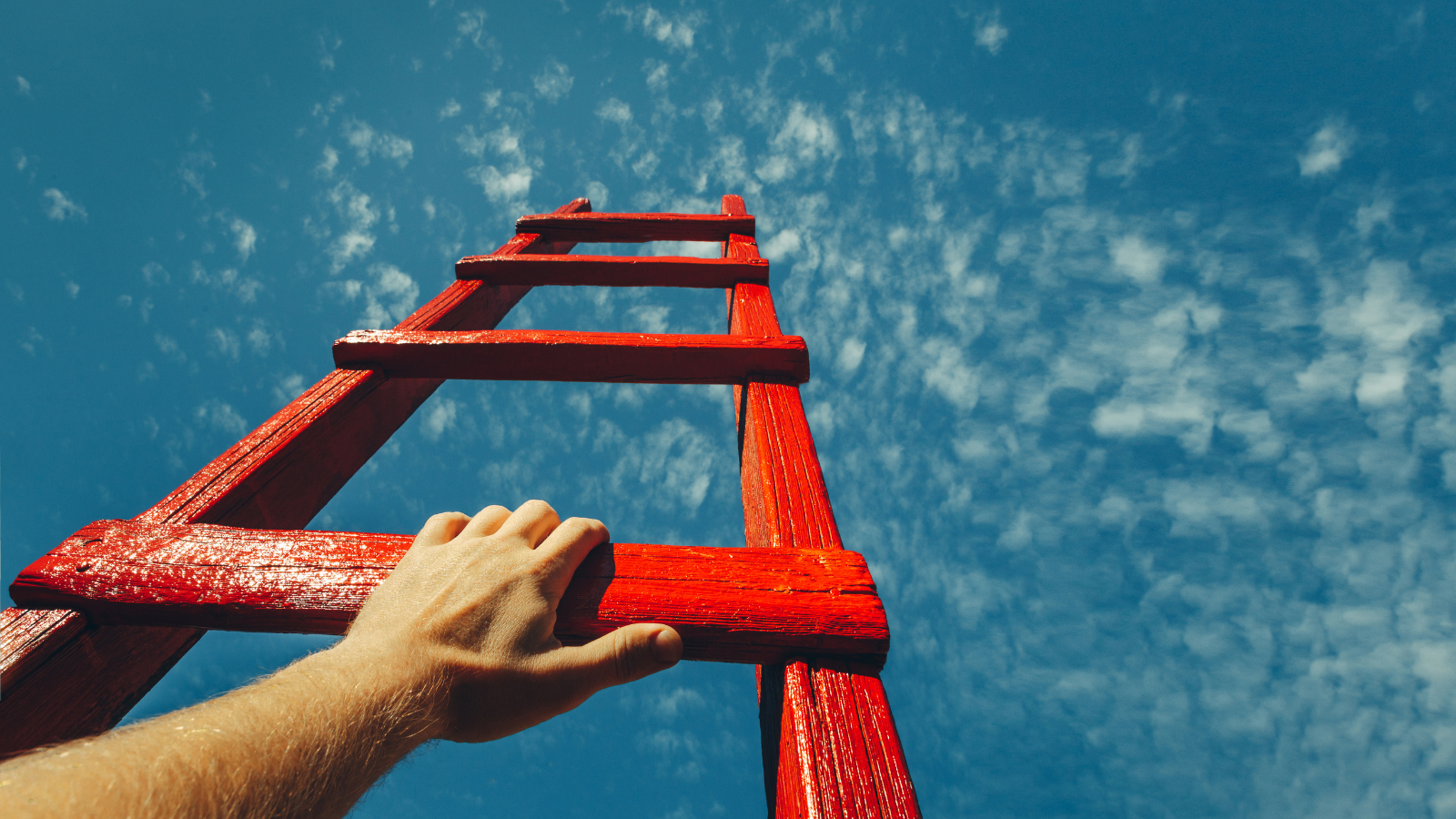 Weekly Roundup: How to Climb the Ladder, The Best Question is the One You Never Ask + More