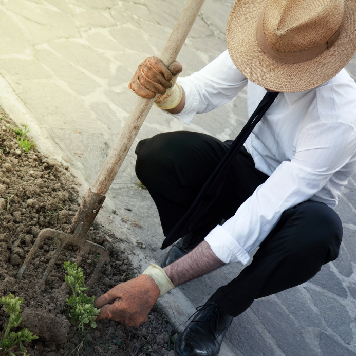 gardeners-leaders