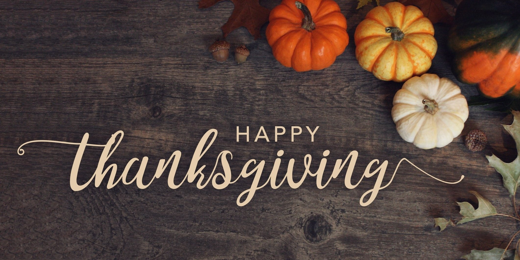 happy thanksgiving from css