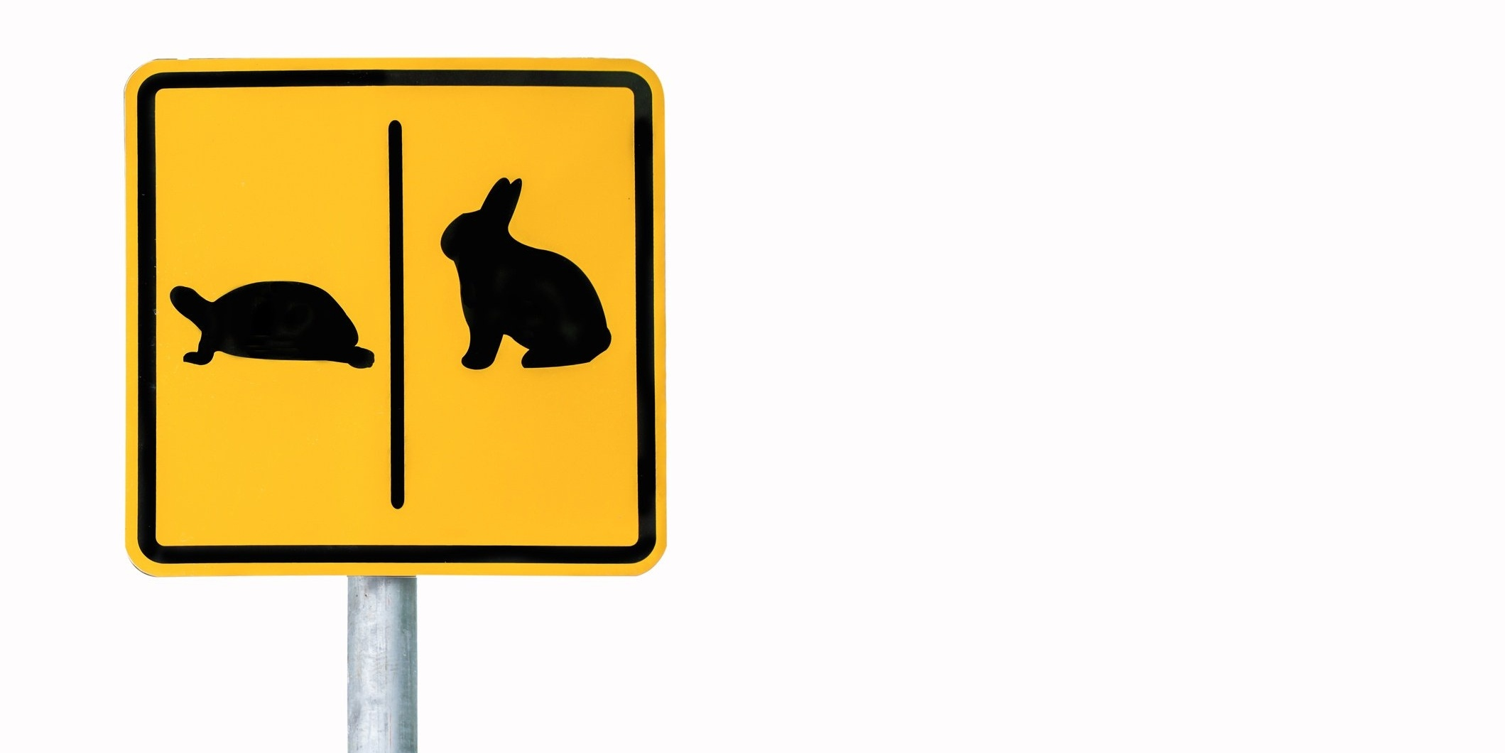 accelerate sales process by slowing down
